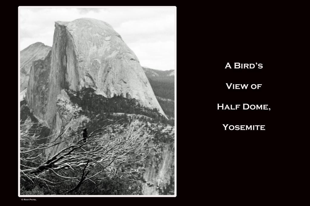 A Bird's View of Half Dome, Yosemite