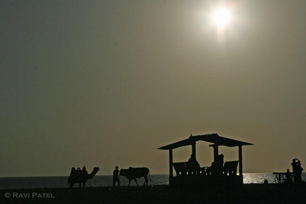 Mandvi Beach Silhouette