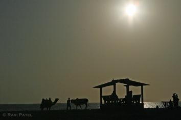 A Beach Silhouette