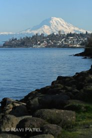 Mt. Rainier Tacoma