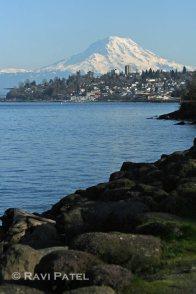 Mt. Rainier Tacoma