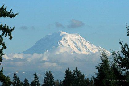 Mount Rainier Framed