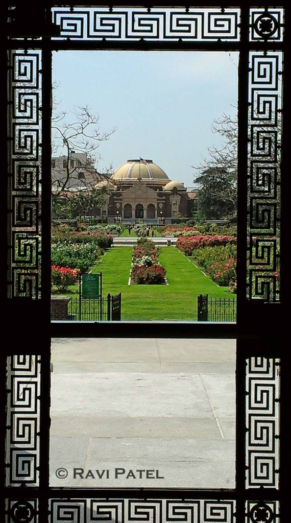 Framed Perspective of a Rose Garden