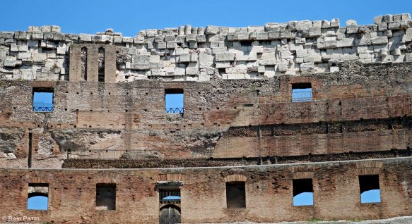 Coliseum Windows