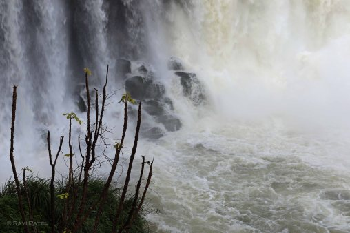 Iguazu Falls - Force of Water