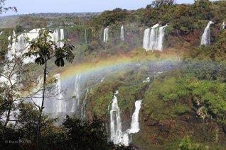 Iguazu Falls - Rainbow Sighting