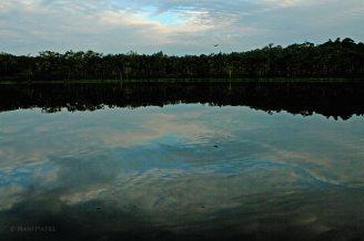 Ecuador Amazon - Sky Reflections in the Lake
