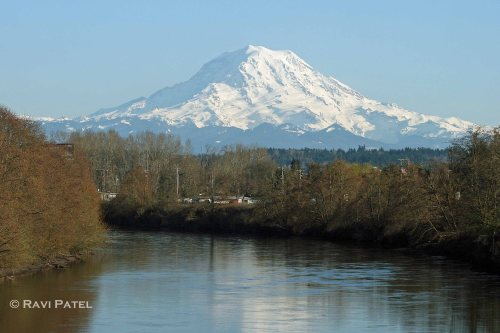 Mt. Rainier over the River