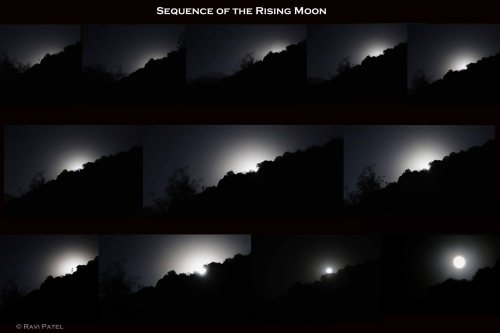 Sequence of the Rising Moon
