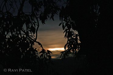 Sunrise Opening