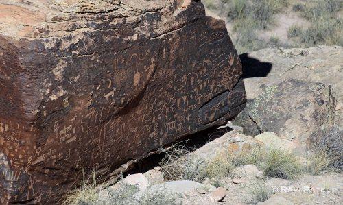 Arizona - Newspaper Rock Detailed Images