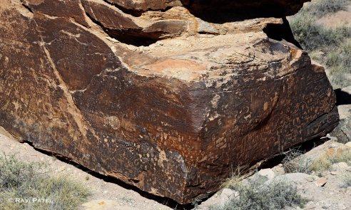 Arizona - Newspaper Rock Images