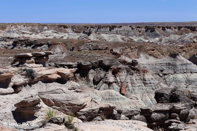 Arizona - Petrified Forest Formations