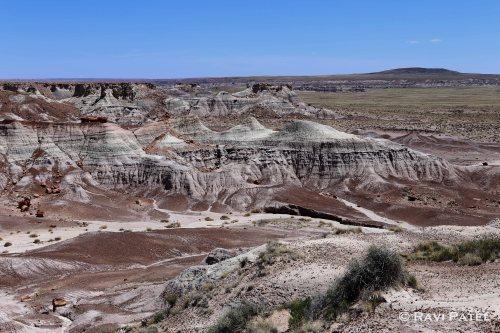 Arizona - Petrified Forest Landscape