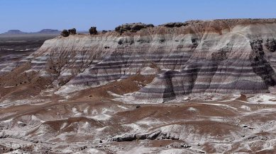 Arizona- Petrified Forest Patterns