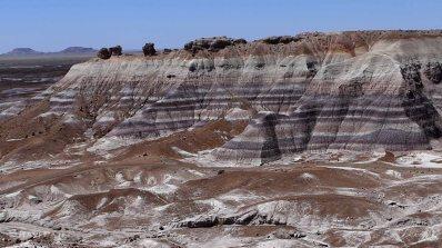 Arizona- Petrified Forest Patterns