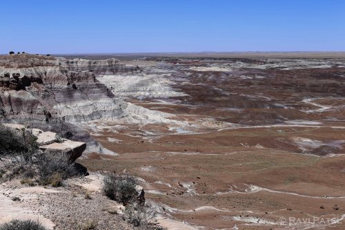 Arizona - Petrified Forest Vista