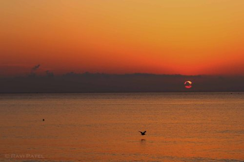 Florida - Delray Beach - Glorious Sunrise