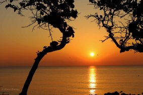 Florida - Delray Beach - Sunrise Framed