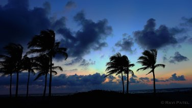 Florida - Palm Beach - Dawn