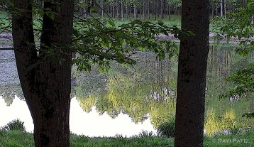 North Carolina Landscape - An Artistic Rendering
