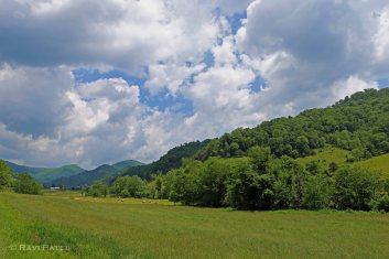 Up in the Blue Ridge Mountains
