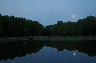 North Carolina - Moon Reflections in a Pond