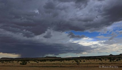 Rain Clouds in New Mexico