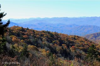 Blue Ridges and Fall Colors