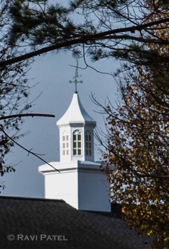 A Steeple Through the Trees