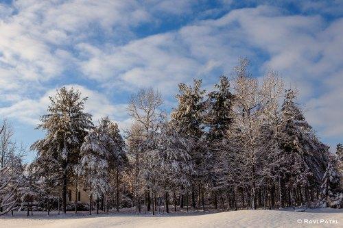 A Snow Card from North Carolina