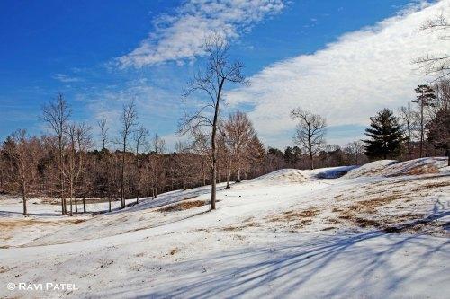 A Snowy Landscape