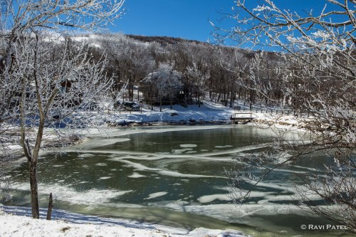 A Winter Scene on a Pond