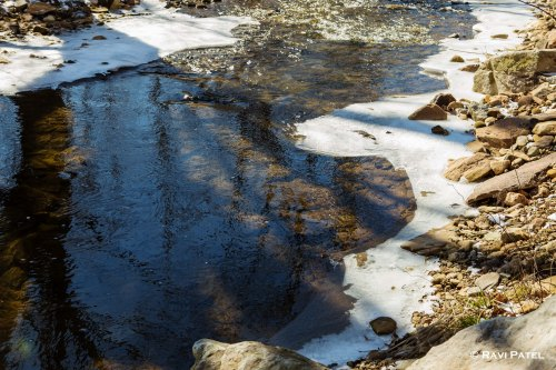 Reflections in the Creek