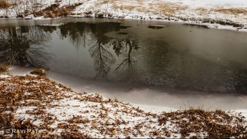 Reflections on a Partially Frozen Pond