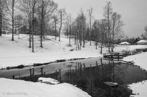 Snow Reflections in B&W