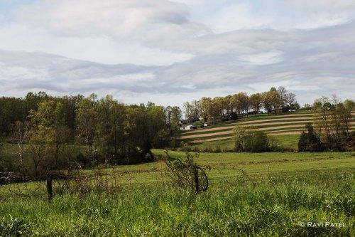 North Carolina Rural Countryside in Spring
