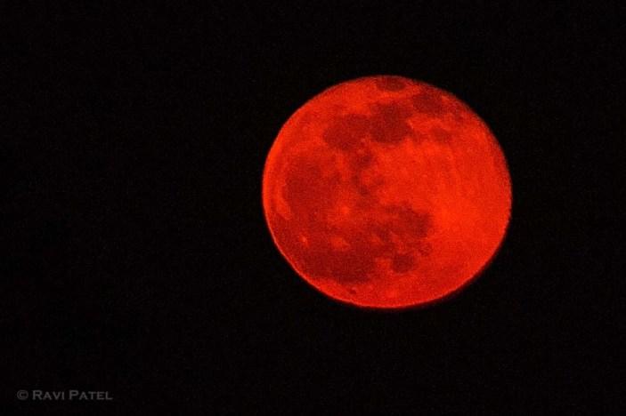 Bright Orange Full Moon
