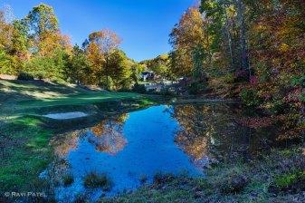 Fall at the Golf Green