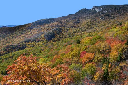 Fall Colors on the Mountain