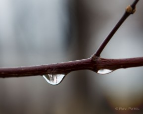 A Drop of Water