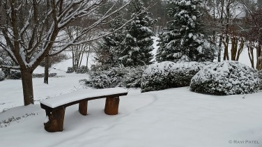 An Empty Snow Bench