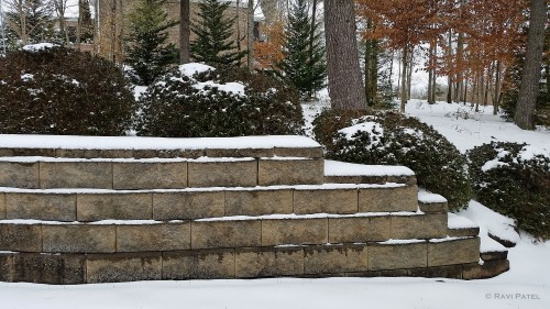 Designs in Snow