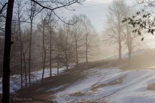 A Winter Morning
