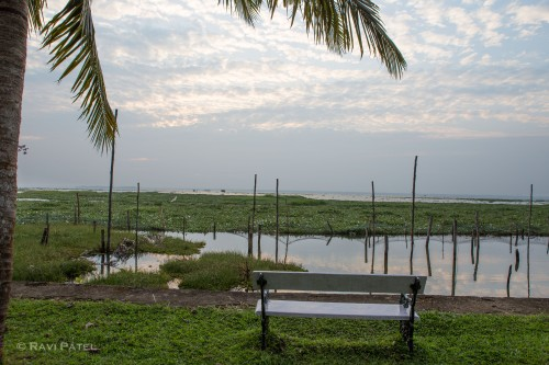A Bench View of Vembanadu Lake