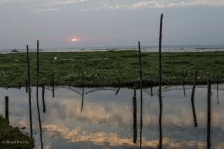 A Faint Sunset over Vembanadu Lake