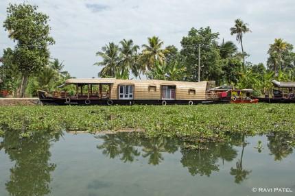 A Typical Kerala Backwaters Scene