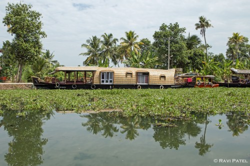 A Typical Kerala Backwaters Scene