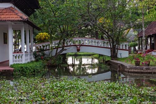 Coconut Lagoon Bridge Reflections