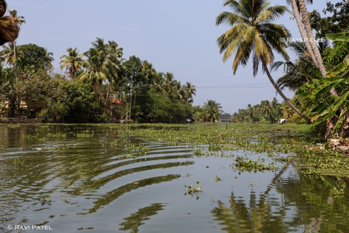 Designs in the Backwaters